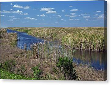 Stormwater Treatment Area Canvas Print by Jim West