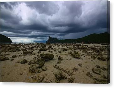 Stormy Beach Canvas Print by FireFlux Studios