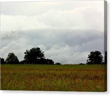 Stormy Canvas Print by Deborah  Crew-Johnson