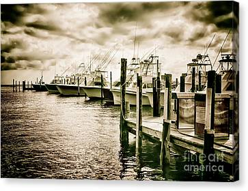 Stormy Marina On The Outer Banks Canvas Print by Dan Carmichael