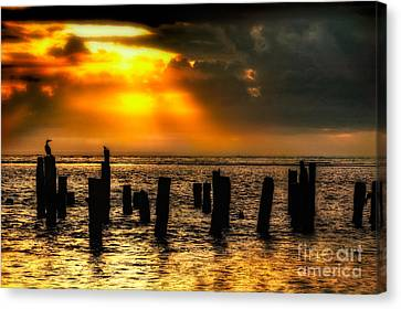 Stormy Skies At Sunrise Outer Banks Canvas Print by Dan Carmichael