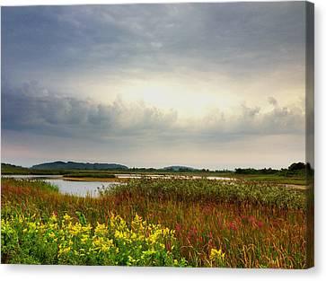 Stormy Skies Canvas Print by Nancy Landry