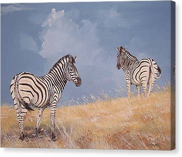Stormy Zebra Canvas Print by Robert Teeling