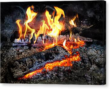 Stove - The Yule Log  Canvas Print by Mike Savad