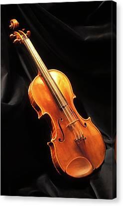 Stradivari Violin Canvas Print by Patrick Landmann