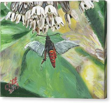 Strange Bug At Flowers Canvas Print