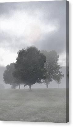Canvas Print featuring the photograph Strange Moon by Ben Kotyuk