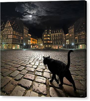 Strasbourg's Night Canvas Print by Igor Zenin