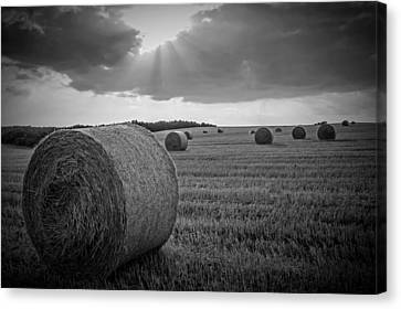 Cabin Wall Canvas Print - Straw Bales And Sunrays Bw by David Dehner