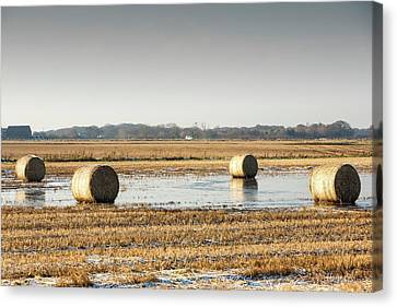 Straw Bales On Flooded Field Canvas Print by Ashley Cooper