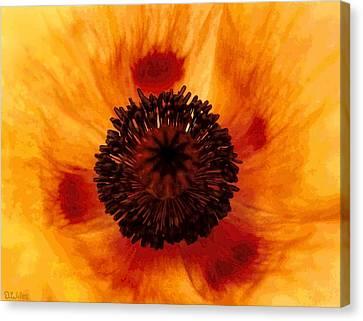 Straw Poppy Canvas Print