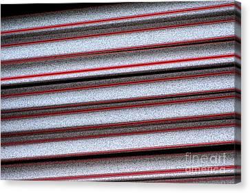 Straw Red Canvas Print by Carol Lynch
