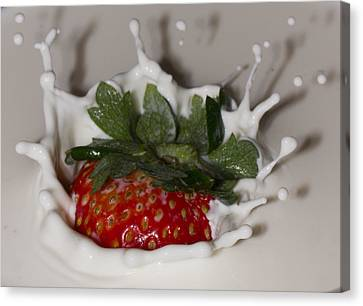 Canvas Print featuring the photograph Strawberry And Cream by Cathy Donohoue