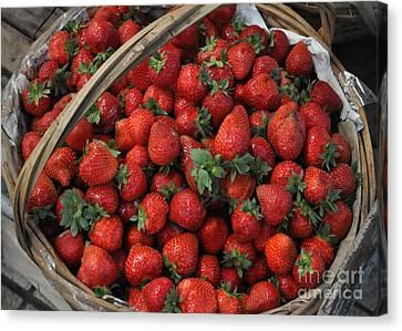 Strawberry Basket Canvas Print