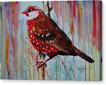 Strawberry Finch Canvas Print by Isabel Salvador