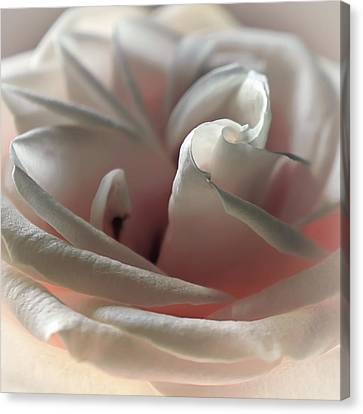 Strawberry Pastry Canvas Print by Darlene Kwiatkowski