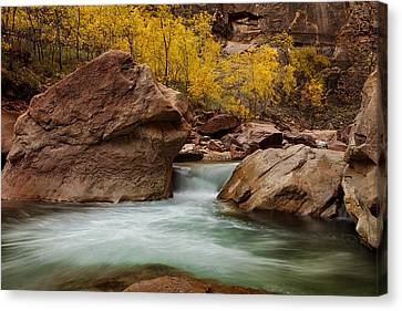 Stream At Autumn Canvas Print by Andrew Soundarajan