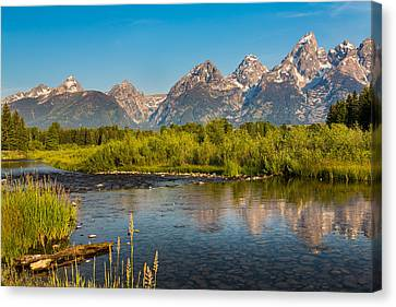 Stream At The Tetons Canvas Print by Robert Bynum