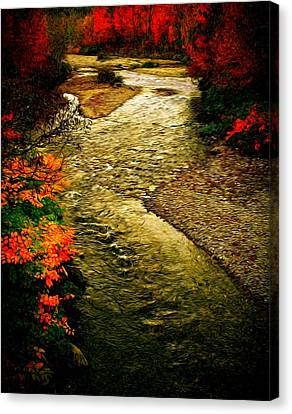 Stream Canvas Print by Bill Howard