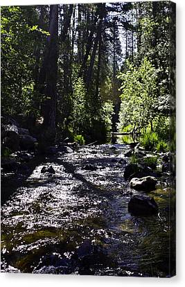 Canvas Print featuring the photograph Stream by Brian Williamson