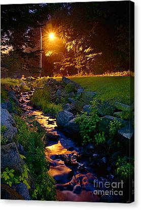 Stream By Streetlight Canvas Print by Mark Miller