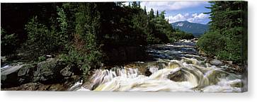 Stream Flowing Through A Forest, Little Canvas Print by Panoramic Images