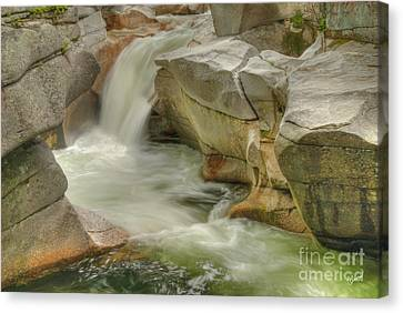 Stream IIi Canvas Print by Alana Ranney