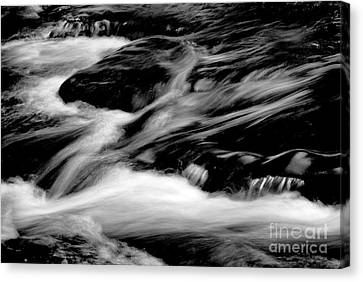 Stream In Bw Canvas Print