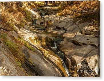 Stream In The Sierras  1-7828 Canvas Print
