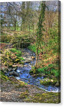 Canvas Print featuring the photograph Stream In Wales by Doc Braham