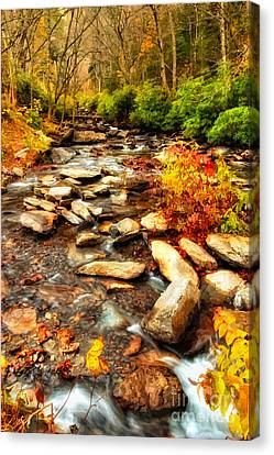 Stream Into Fall - Great Smokey Mountains Canvas Print