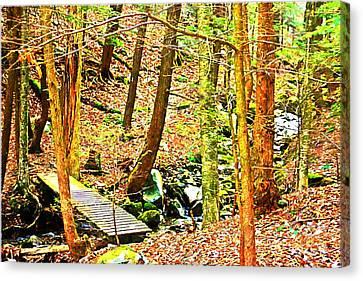 Stream On Appalachian Trail Canvas Print