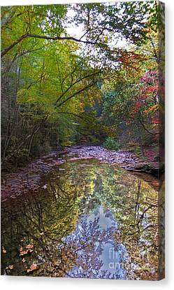 Trough Creek Reflection Canvas Print by Dawn Gari