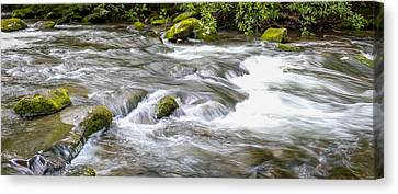 Canvas Print featuring the photograph Stream  by Trace Kittrell
