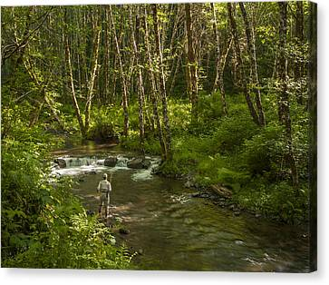 Stream Trout Fishing Canvas Print