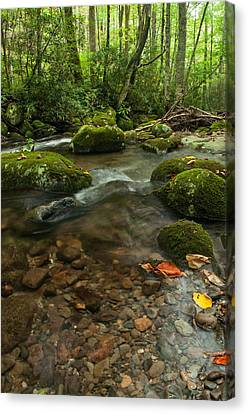 Canvas Print featuring the photograph Stream With The Color Of Early Fall. by Debbie Green