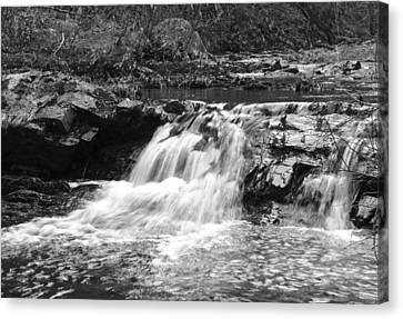 Canvas Print featuring the photograph Streambed 2 by David Lester