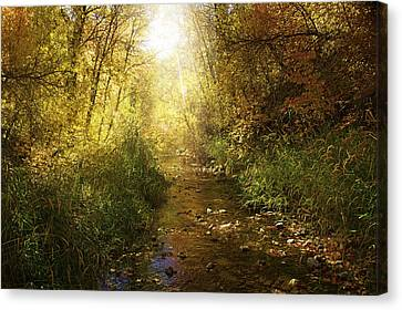 Streams Of Light Canvas Print