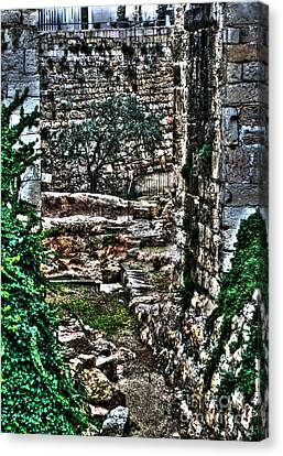 Canvas Print featuring the photograph Street In Jerusalem by Doc Braham