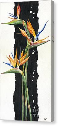 Strelitzia - Bird Of Paradise 11 Canvas Print