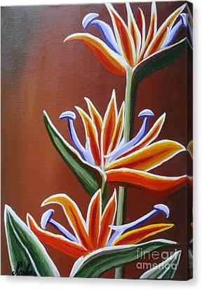 Strelitzia Canvas Print