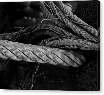 Strength Of Strings Canvas Print by Odd Jeppesen