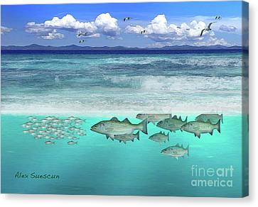 Stripers In The Surf Canvas Print by Alex Suescun