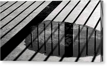 Stripes And Reflections 1 Canvas Print