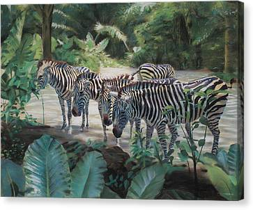 Stripes Canvas Print by Christopher Reid