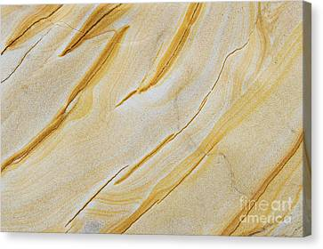 Stripes In Stone Canvas Print by Tim Gainey
