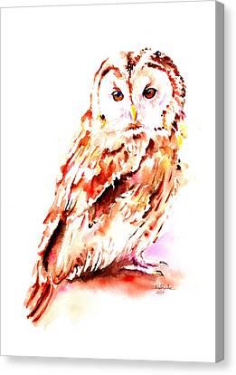 Visual Creations Canvas Print - Strix Aluco by Isabel Salvador