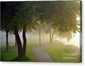 Stroll In The Fog Canvas Print by Terri Gostola