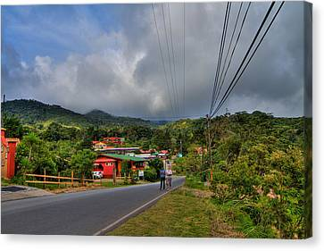 Strolling Around Monteverde In Costa Rica Canvas Print by Andres Leon