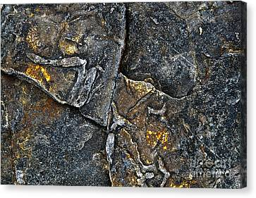 Structural Stone Surface Canvas Print by Heiko Koehrer-Wagner